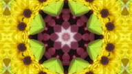 Colorful Flowers Kaleidoscope