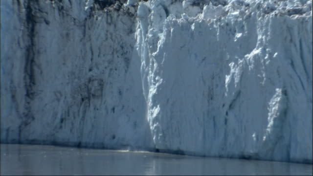 Columbia Glacier calves in Alaska. Available in HD.