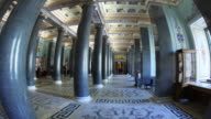 20 column hall fisheye HL 1