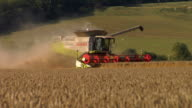 WS TS Combine harvester cutting wheat / Wittersham, Kent, United Kingdom