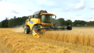Combine harvester in field