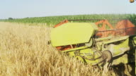 HD SLOW MOTION: Combine Harvester In The Wheat Field