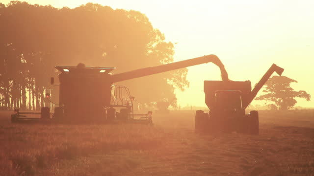 Combine Harvester sunset