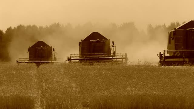 combine harvester - wheat field