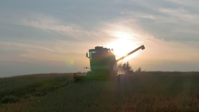 Combine Harvesting at Sunset