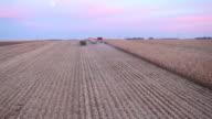 Combine Harvesting Fall Cornfield Aerial at Dusk