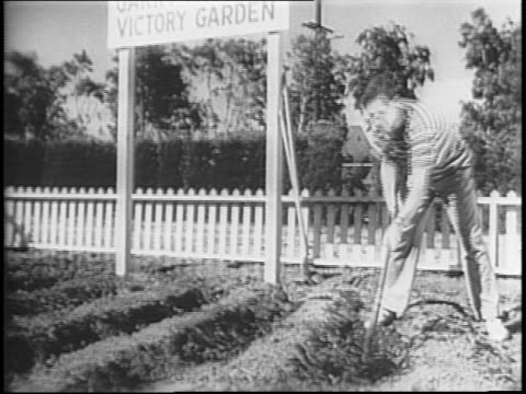 A Comedic Skit about neighbors and their Victory Gardens for food rationing / A man tending to his victory garden in his backyard / Neighbors talking...