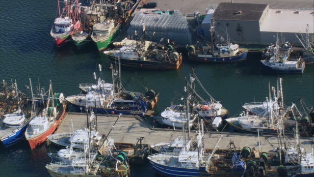 AERIAL Commercial fishing boats docked along a marina in New Bedford / Massachusetts, United States