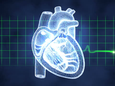 computer animated video clip of a pulse monitor superimposed over a heart and other various bones and body parts