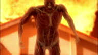 A computer animation depicts a skinless man running away from a fire.