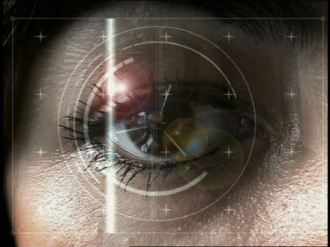 Computer generated image retinal scanning of woman / data screen indentifying her as 'OK'