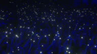 Concert Crowd with Cell Phone Lights