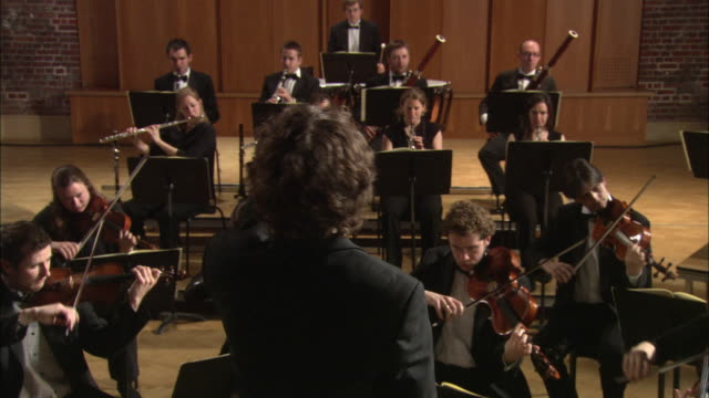 MS PAN Conductor leading orchestra / London, United Kingdom