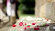 Konfetti auf den Boden nach einer Hochzeit.
