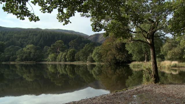 MS, Coniston Water lakeshore, Lake District, Cumbria, England