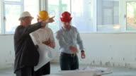 HD CRANE: Construction Team