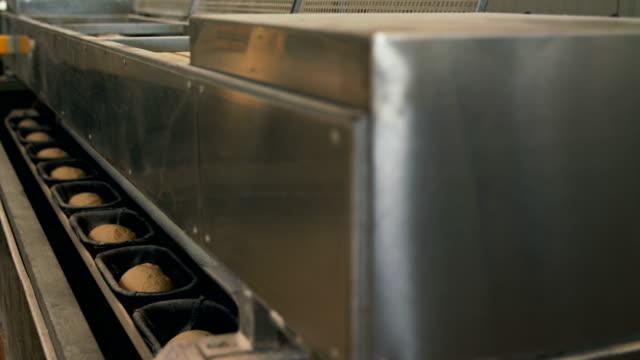 Conveyor at bakery plant