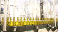 Conveyor line for bottling wine