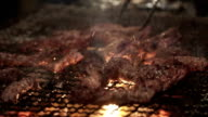 Cooking delicious Meat chicken and pork skewers on Barbecue Grill