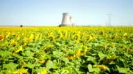 Kühlende towers im Herzen von Sonnenblumen-Feld