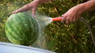 HD: Cooling watermelon