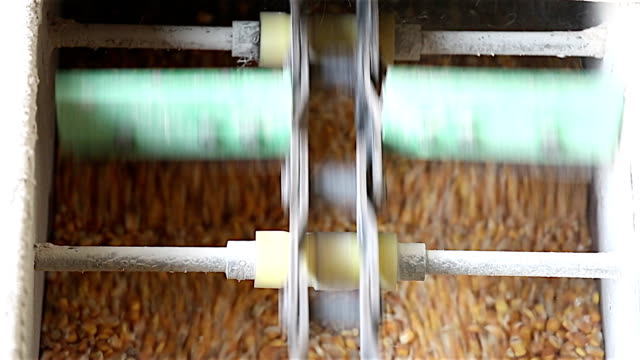 Corn Bearbeitung factory