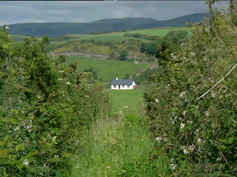 Cottage in distance seen through gap in hedgerow