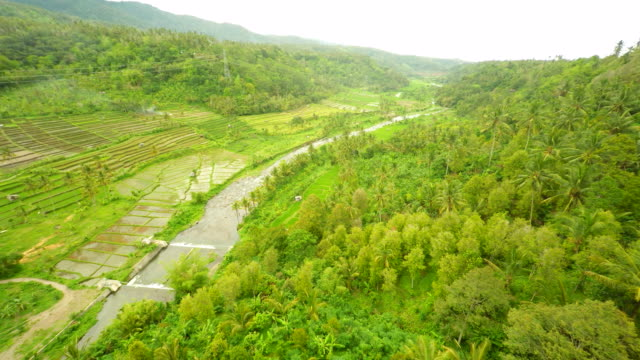AERIAL Countryside Along The River In Bali