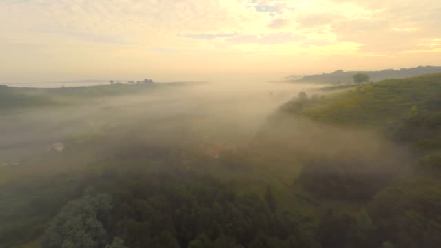 AERIAL Countryside In The Fog