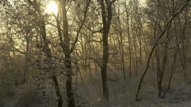 Luchtfoto platteland in de winter