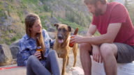 MS Couple having beer and playing with dog at campsite