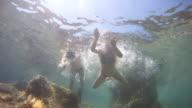 HD SLOW MOTION: Couple Having Fun In The Sea