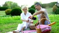 Couple Having Wine at Picnic