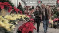 Couple in garden centre choosing poinsettia