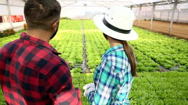 Couple In Greenhouse On Organic Farm