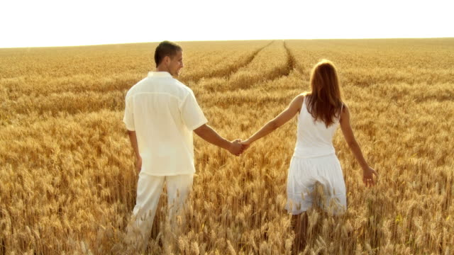 HD CRANE: Couple In Wheat