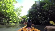 A couple kayaking at Raiatea Island on the Faaroa River, the only navigable river in French Polynesia.