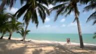 A couple of tourists walk on beach with palm trees