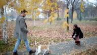 Paar mit Hund für einen Spaziergang In der Stadt Park