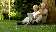 HD: Couple Using A Digital Tablet In The Park
