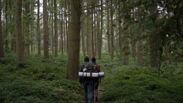 Couple walking through dirt track in forest