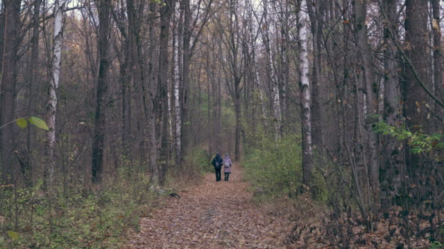 Couple walking through forest in autumn