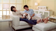 MS, ZI, ZO, Couple with Bulldog relaxing in living room
