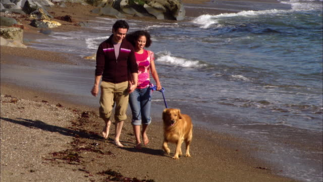 MS, Couple with dog walking on rocky beach, Moonstone Beach, Cambria, California, USA