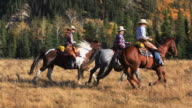 Cowboy and Cowgirls galloping on horseback through the mountain foothills