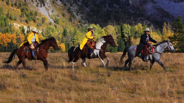 Image result for COWGIRLS WORKING IN RANCHES