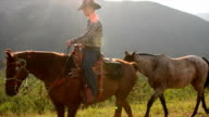 Cowboy leads horses across mountain meadow