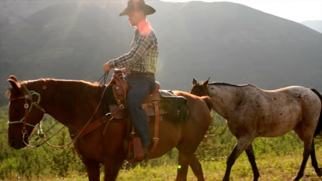 Cowboy leads horses across mountain meadow