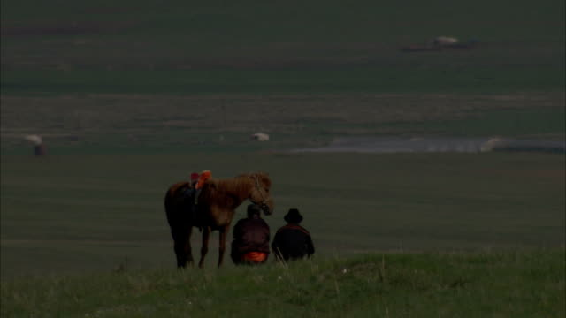Cowboys and their horse rest on a grassy knoll that overlooks a flock of sheep in the distance. Available in HD.