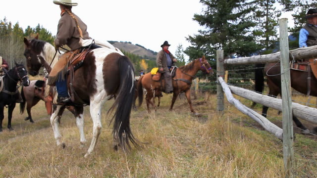 Cowboys on old west cattle roundup